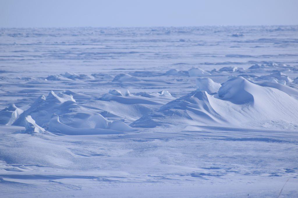 Zamrznuté Beringovo more