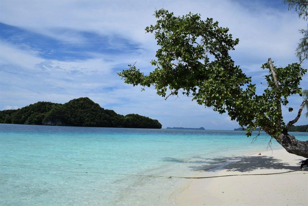 Palau – cestovateľské rady a tipy