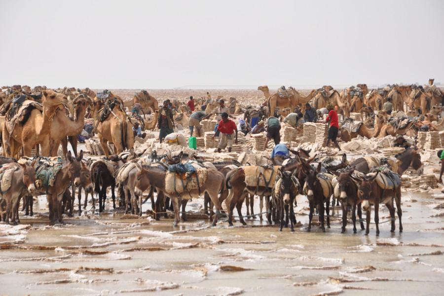Etiópia - cesta za zážitkami