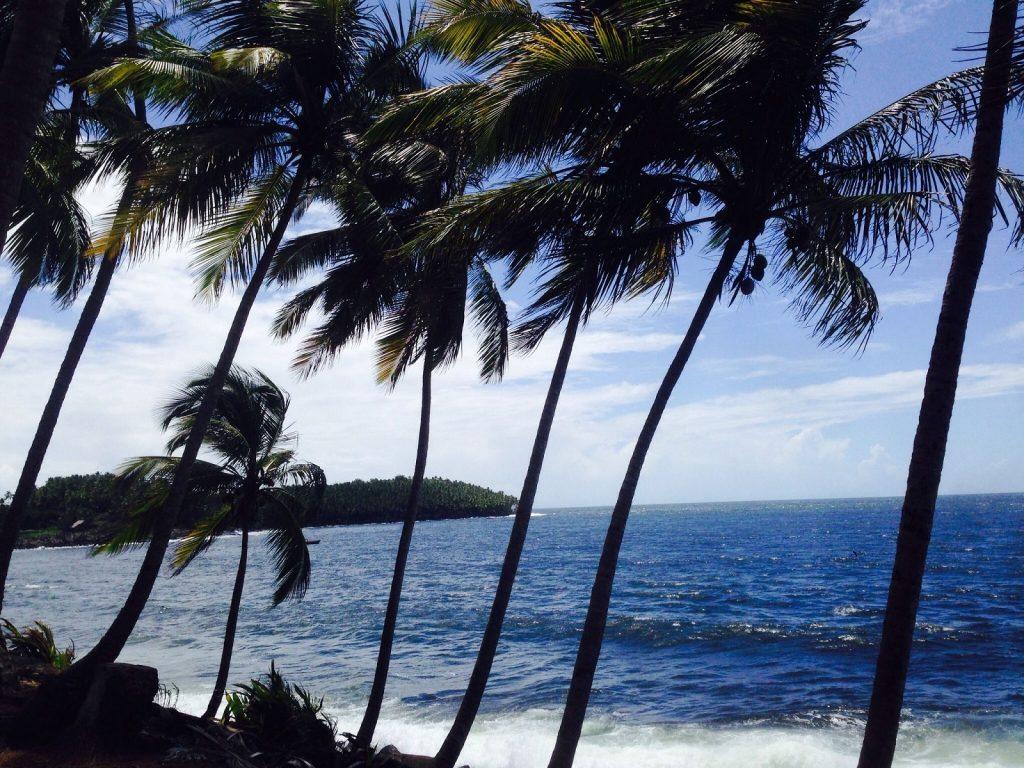 Francúzska Guyana alebo cesta na ostrovy Spásy